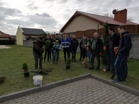1000_drzew_na_minute01